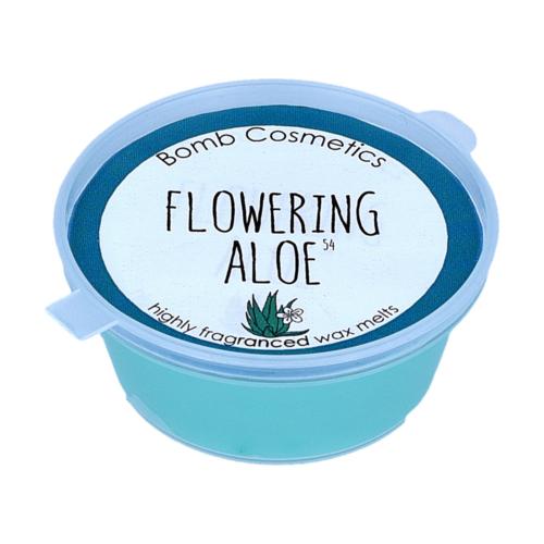 Virágzó aloe Mini Melt